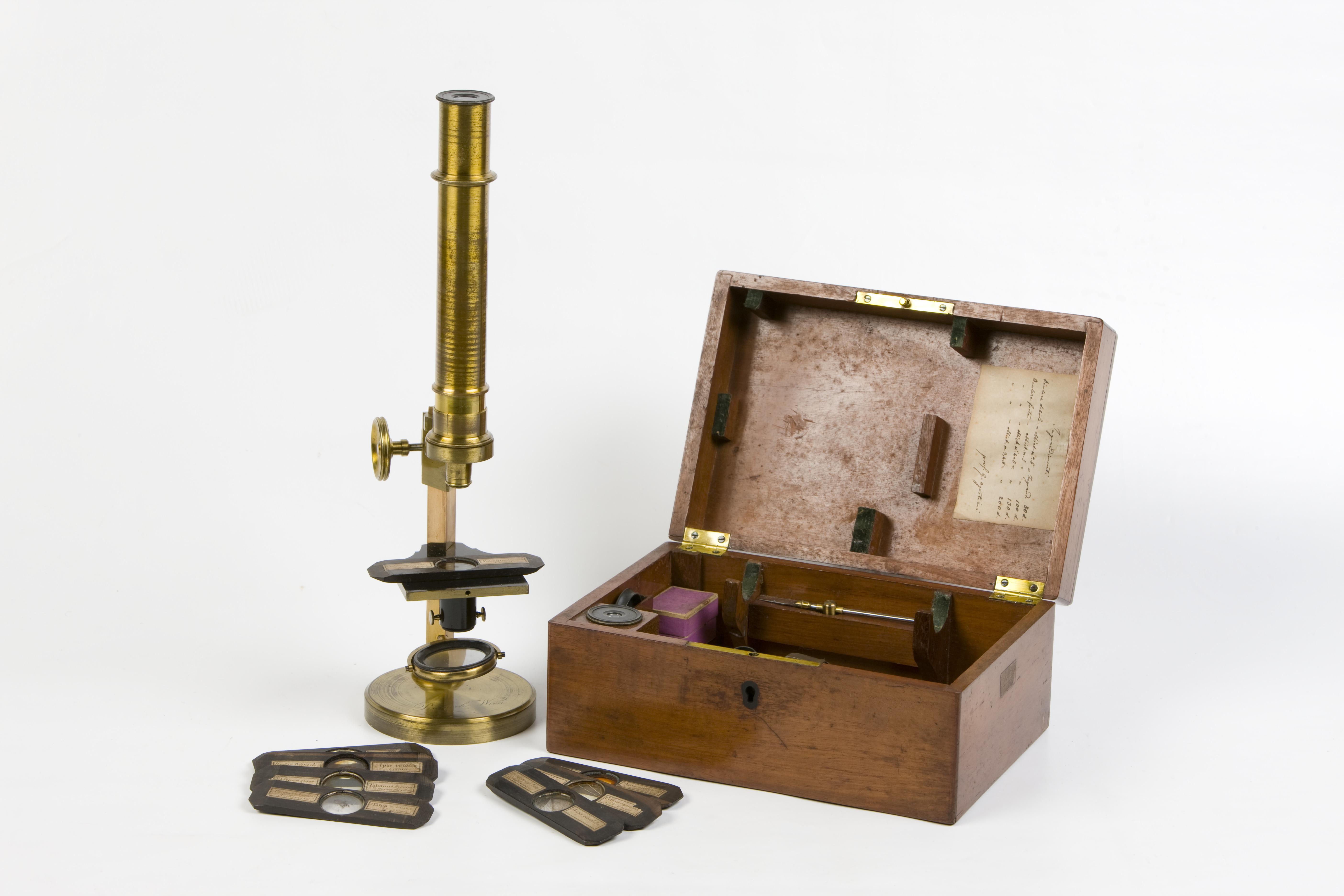 19- Microscopio composto tipo Cuff